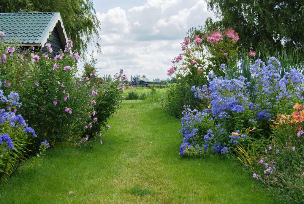 Bloemrijke tuin 11