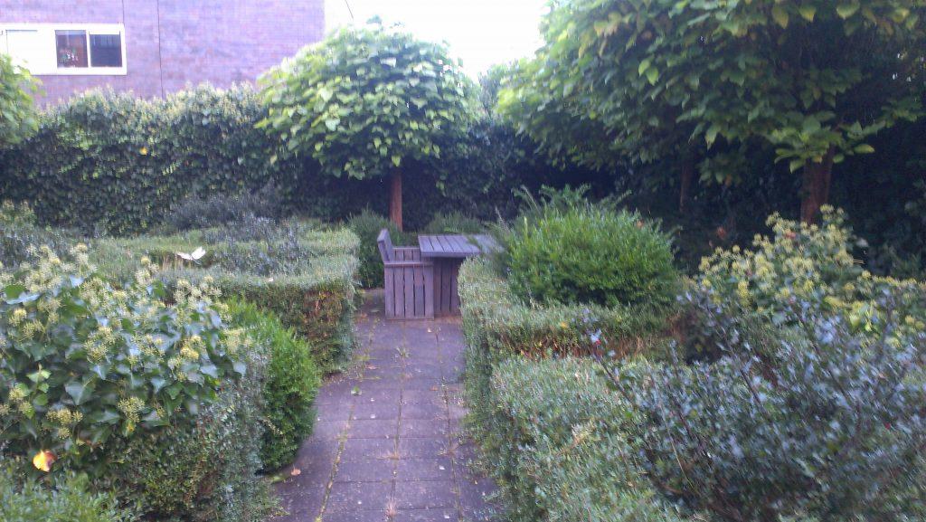 Oude tuin - Utrecht - tuinontwerp