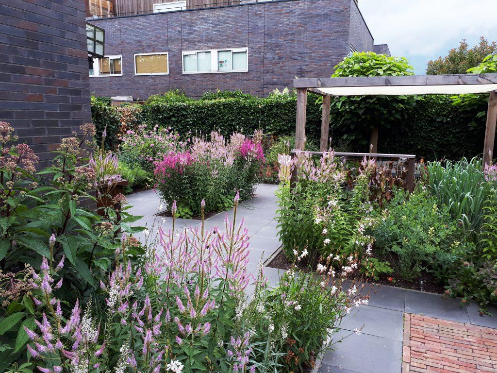 Utrecht Hoge weide tuinontwerp tuinarchitect