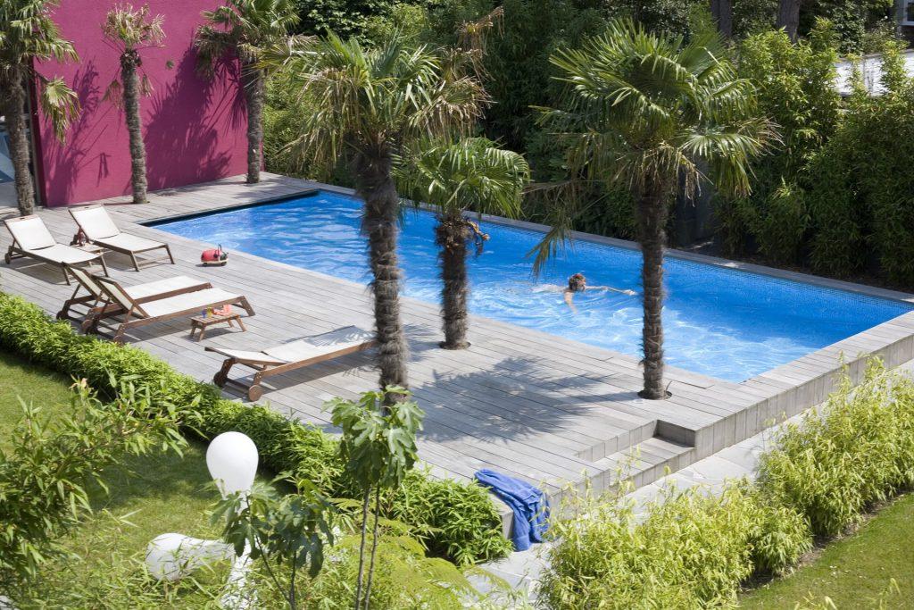 Zwembad met palmen